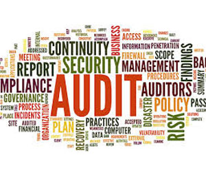 Costing, tendering, audit, profit loss analysis